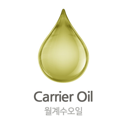 월계수 오일(Laurel Leaves Oil)